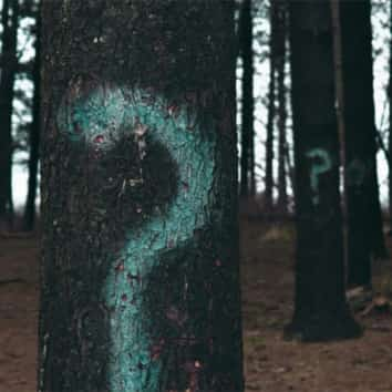 Did you say don't draw down your pension Trees with question marks on them