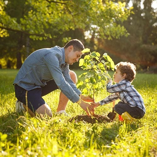 Private client image - father and son planting a plant in the ground