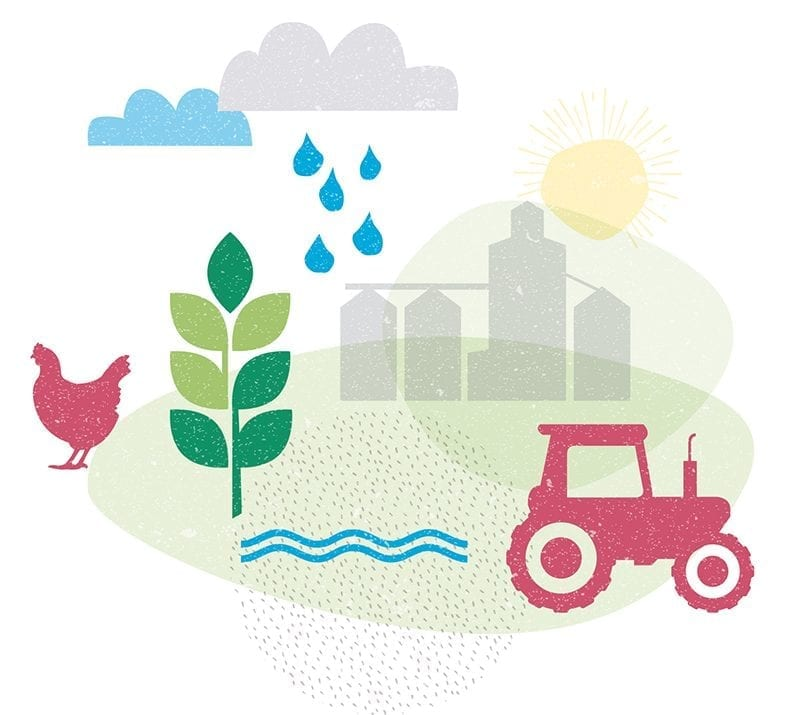Agriculture sector illustration